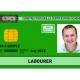 CSCS Labourer Card